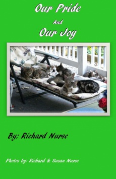 Ebook cover: Our Pride & Our Joy