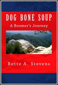 Ebook cover: DOG BONE SOUP, A Boomer's Journey