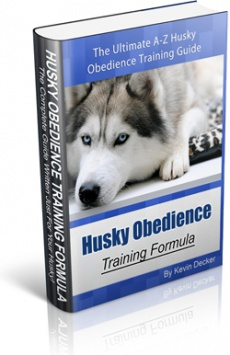 Ebook cover: Husky Obedience Training Formula