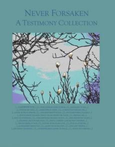 Ebook cover: Never Forsaken: A Testimony Collection