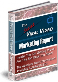Ebook cover: The Secret Viral Video Marketing Report