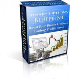 Ebook cover: Binary Options Blueprint
