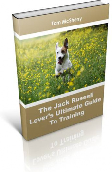 Ebook cover: The Jack Russell Lover's Ultimate Guide to Training