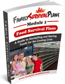 Ebook cover: Family Survival Plans