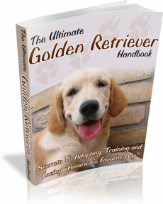 Ebook cover: The Complete Golden Retriever Guide
