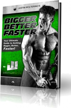 Ebook cover: Bigger, Better, Faster