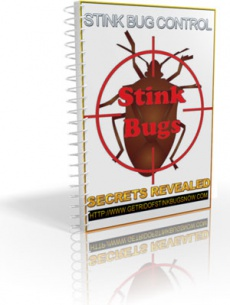Ebook cover: Stink Bug Control Secrets Revealed