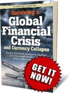 Ebook cover: Surviving a Global Financial Crisis and Currency Collapse
