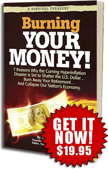 Ebook cover: Burning Your Money