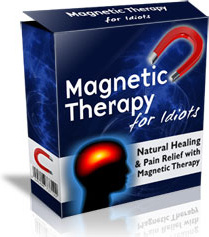 Ebook cover: Magnetic Therapy For Idiots