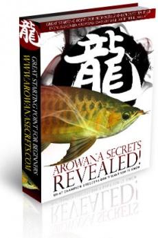 Ebook cover: Arowana Secrets Revealed