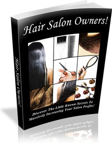 Ebook cover: Hair Salon Owners
