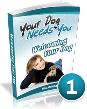 Ebook cover: Your Dog Needs You