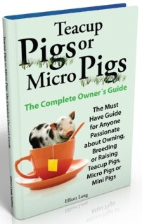 Ebook cover: Tea Cup Pigs And Micro Pigs