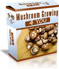 Ebook cover: Mushroom Growing 4 You
