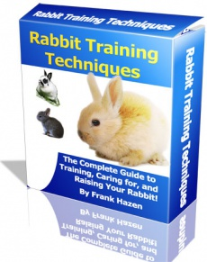 Ebook cover: Rabbit Training Techniques