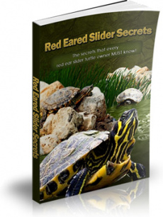 Ebook cover: Red Eared Slider Secrets
