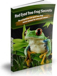 Ebook cover: Red-Eyed Tree Frog Secrets