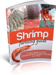 Ebook cover: Shrimp Farming Guide