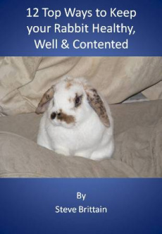 Ebook cover: 12 top ways to keep your rabbit healthy, well & contented