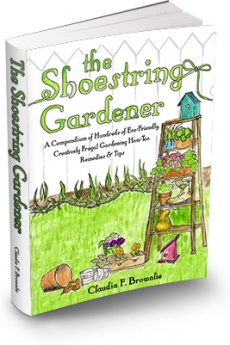 Ebook cover: The Shoestring Gardener