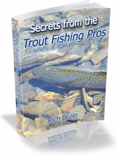 Ebook cover: Secrets from the Trout Fishing Pros