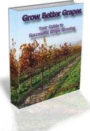 Ebook cover: Grow Better Grapes