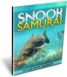 Ebook cover: Snook Samurai