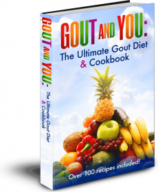 Ebook cover: Gout and You