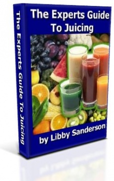 Ebook cover: The Experts Guide To Juicing
