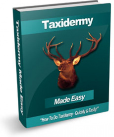 Ebook cover: Taxidermy Made Easy