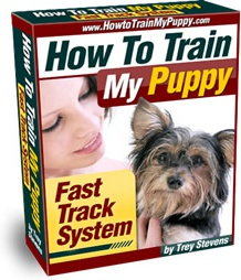 Ebook cover: How To Train My Puppy