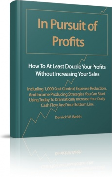 Ebook cover: In Pursuit of Profits