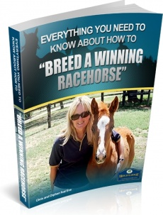 Ebook cover: Breed A Winning Racehorse