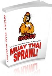 Ebook cover: Muay Thai Sprawl Self Defense