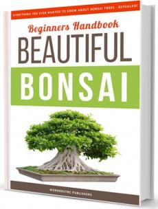 Ebook cover: Beginners Handbook to Beautiful Bonsai