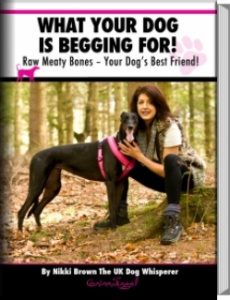 Ebook cover: What Your Dog Is Begging For!