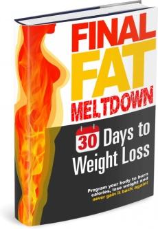 Ebook cover: Final Fat Meltdown