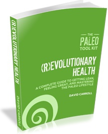 Ebook cover: The Paleo Tool Kit