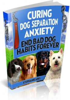 Ebook cover: Curing Dog Separation Anxiety