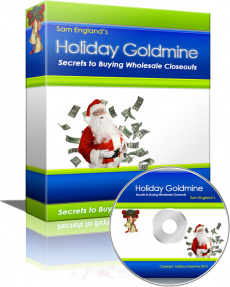 Ebook cover: Holiday Goldmine