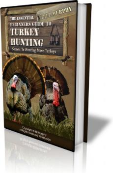 Ebook cover: Turkey Hunting