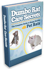 Ebook cover: Dumbo Rat Care Secrets
