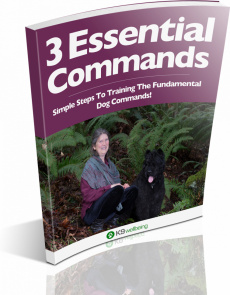 Ebook cover: 3 ESSENTIAL Commands Your Dog Must Learn