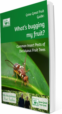 Ebook cover: What's Bugging My Fruit ?