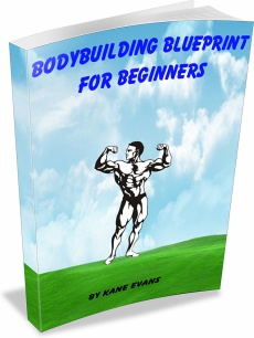 Ebook cover: Bodybuilding Blueprint For Beginners
