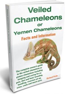 Ebook cover: Veiled Chameleons or Yemen Chameleons