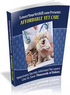 Ebook cover: Affordable Vet Care