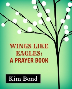 Ebook cover: Wings Like Eagles: A Prayer Book