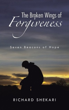 Ebook cover: The Broken Wings of Forgiveness